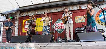 elephant revival carolina mixer 350